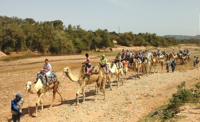 camel ride in Agadir
