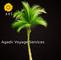 Tour Agadir